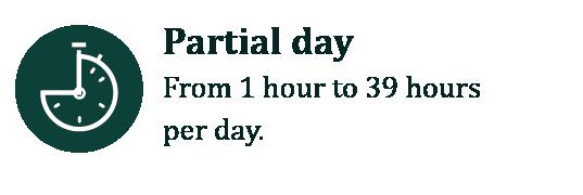 icono partial day