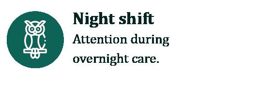 icono NIGHT SHIFT